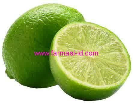 jeruk nipis Citrus aurantifolia (christm)suringle